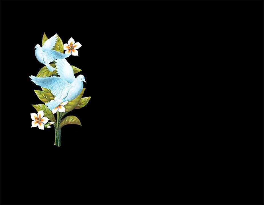 Palomas y flores en porcelánico color incrustado