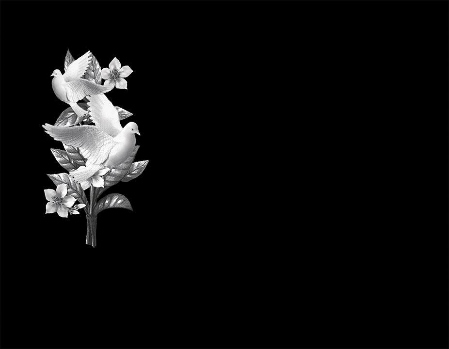 Flores y palomas porcelánico blanco y negro