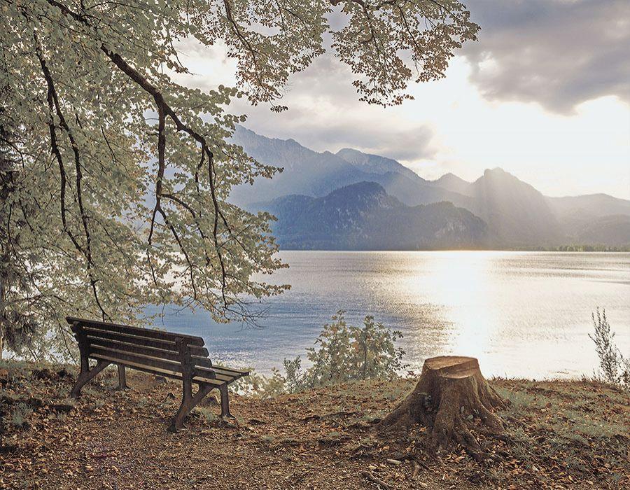 Paisaje banco con vistas al lago
