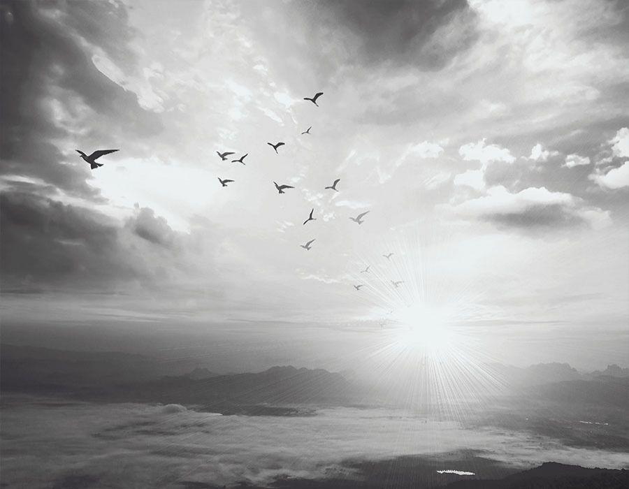 Paisaje puesta de sol en blanco y negro