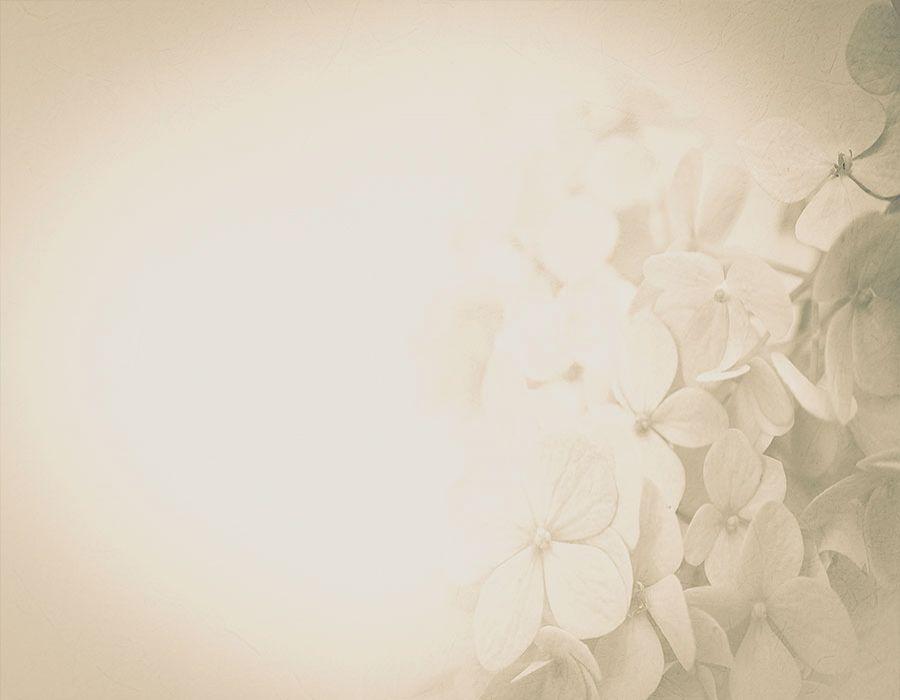 Fondo crema con flores