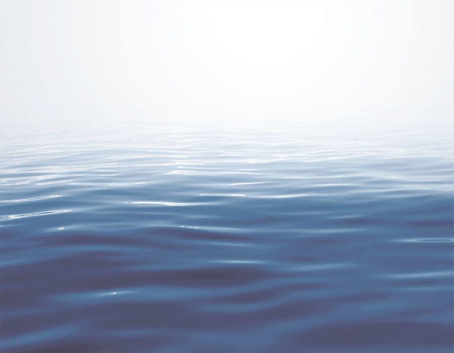 Fondo de mar desvaneciéndose hacia el horizonte.