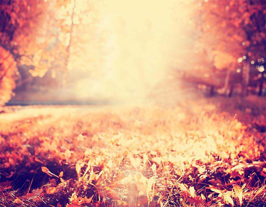 Paisaje de otoño en porcelánico color completo
