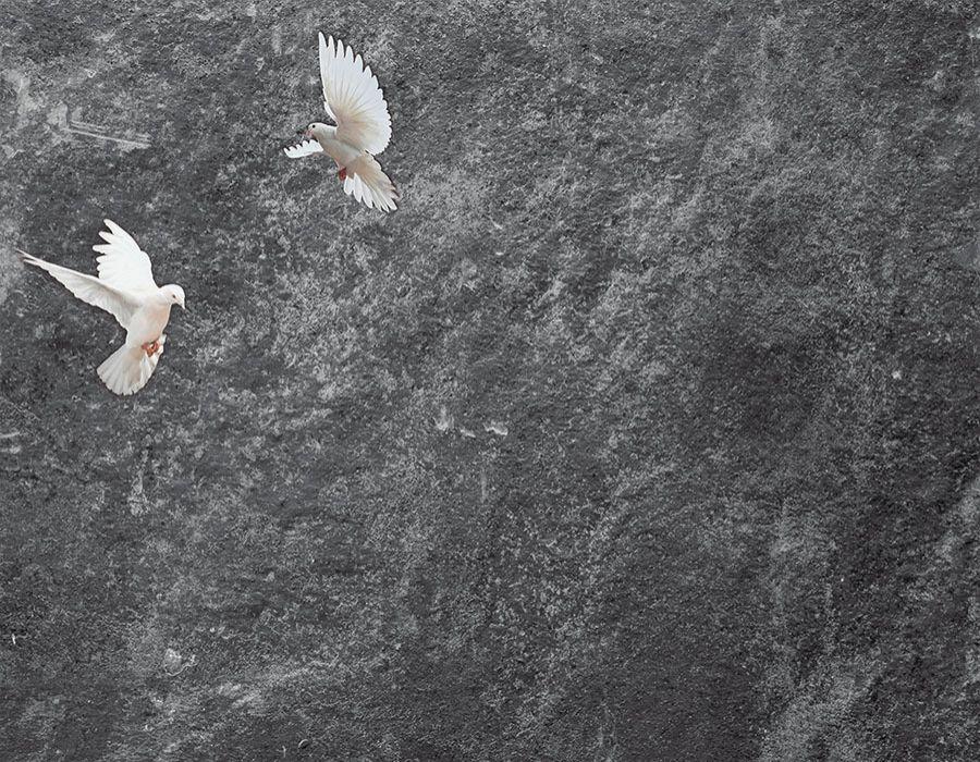 Fondo imitación piedra con palomas