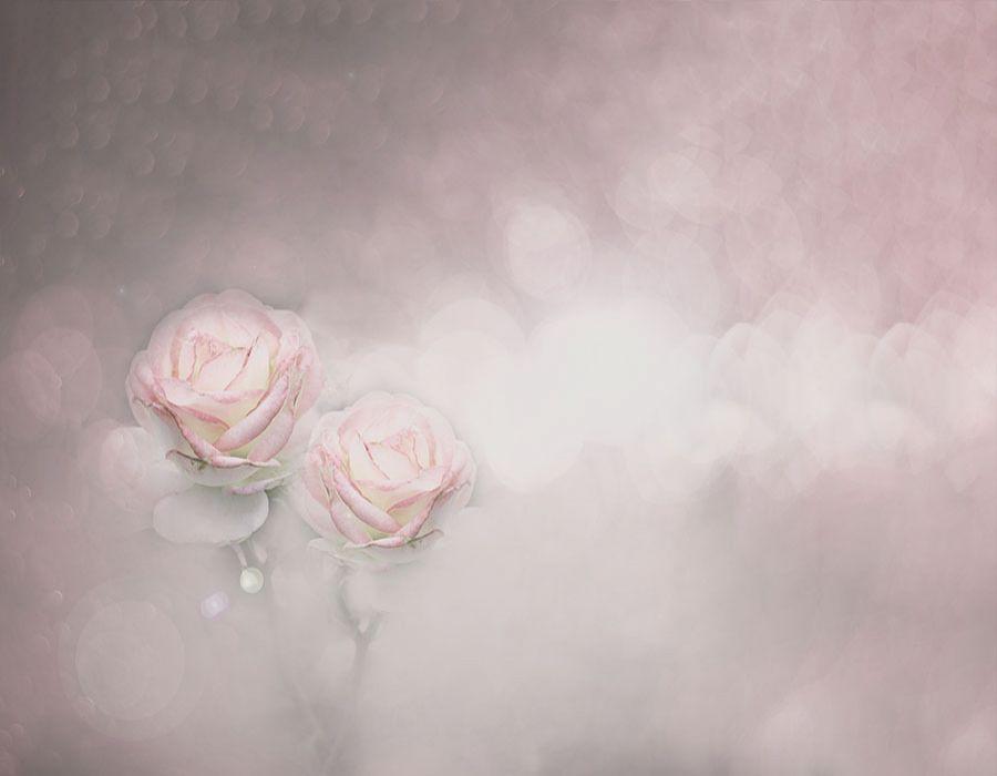 Fondo con rosas en tonos rosaceos y grises