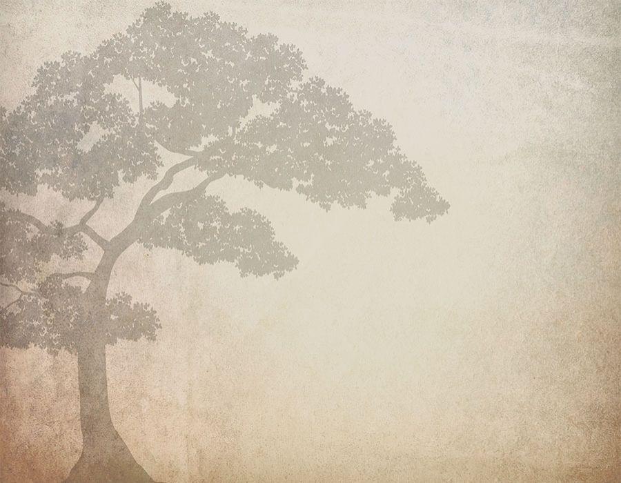 Silueta de árbol con fondo imitación pergamino